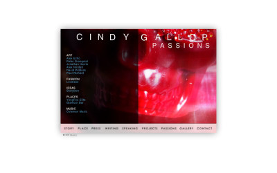 cindygallop8